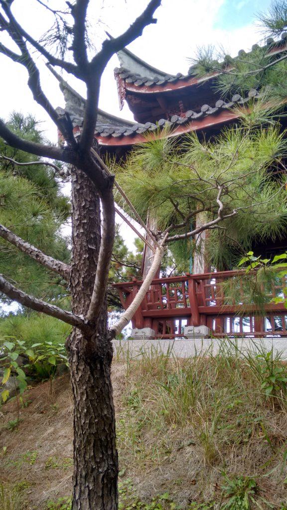Jardim Fukushuen